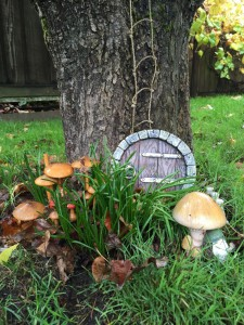 mushrooms and hobbit hole by tree