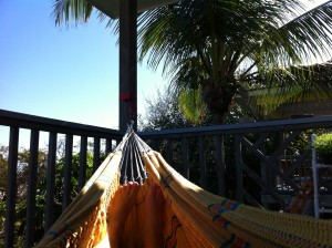 toes in hammock