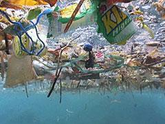 garbage_island (2)