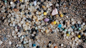 nurdles on beach