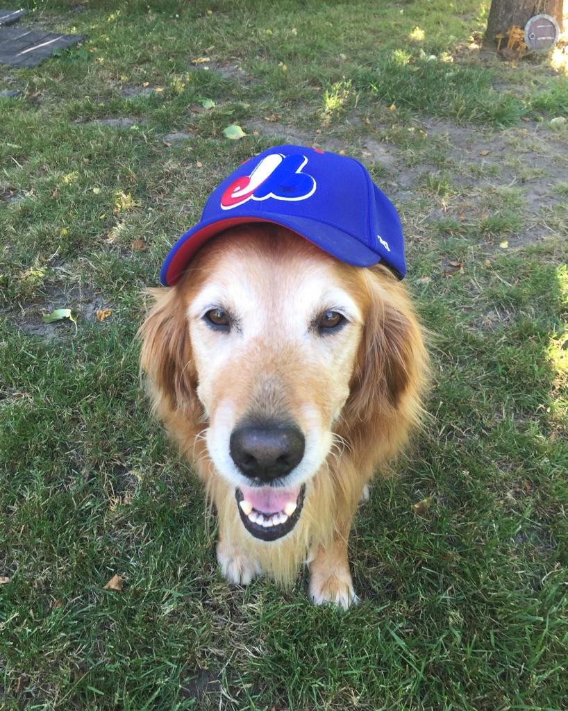 Sadie in Expos ball cap