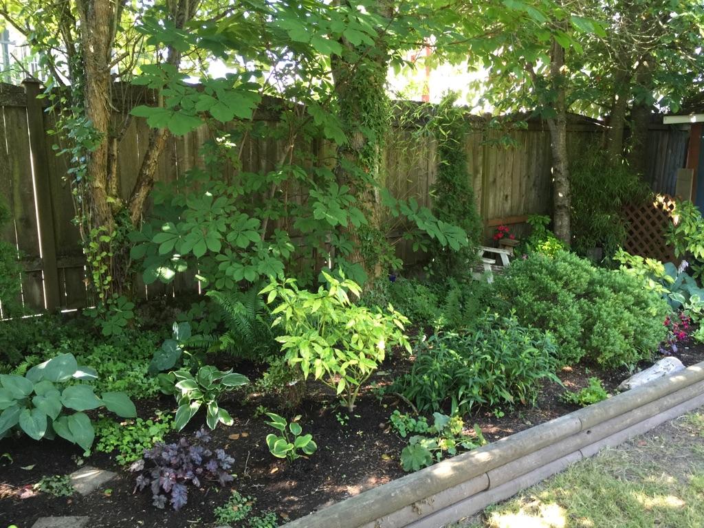 long shot garden
