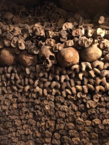 skulls and big bones pile