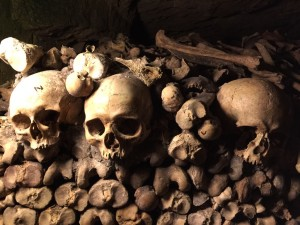 skulls in light at catacombs