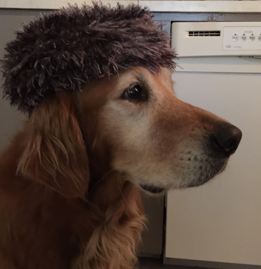 sadie-in-russian-hat-serious