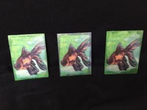 3-fish-prints