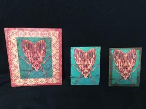 three-moth-prints