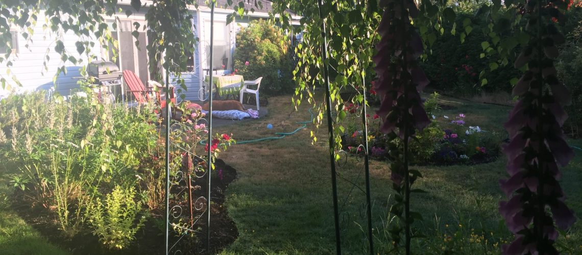 MA backyard beauty French Creek home spring 2019